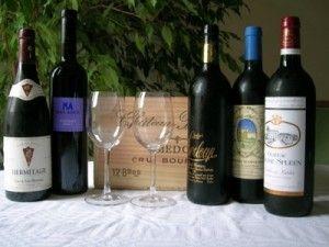cours_stage_déguster et connaître le vin
