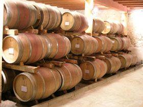 formation-oenologie filière vin